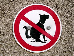 Cacas interdits