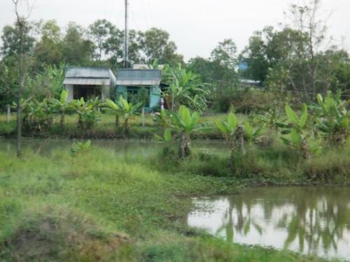 Dans le delta du Mékong