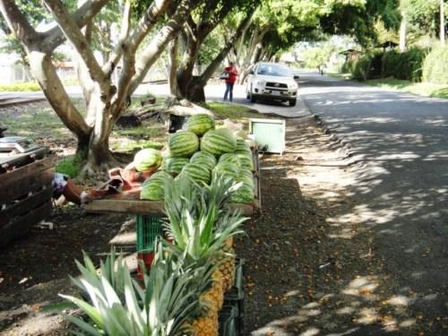 Sur la route d'Alajuela( près de San Rosé) à Jaco sur la côte Pacifique