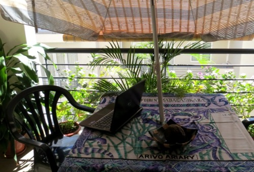 Petite terrasse fleurie où j'écris