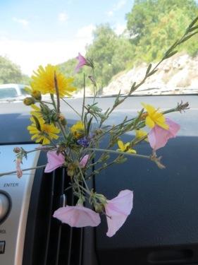 Bouquet souvenir d'une chouette journée ;)