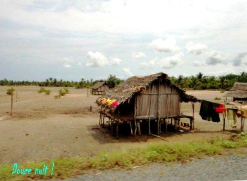 Route digue et cases dans la mangove à marée basse