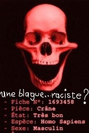 blague-raciste_ink_li